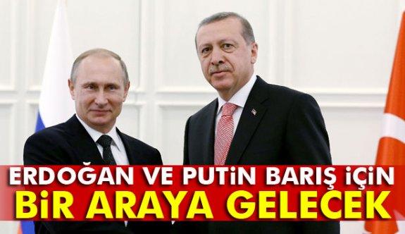 Erdoğan'la Putin biraraya gelecek