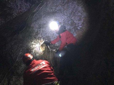 Kayalıklarda mahsur kalan keçiyi AKUT kurtardı