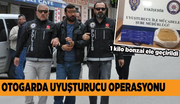 BİR KİLO BONZAİ ELE GEÇİRİLDİ