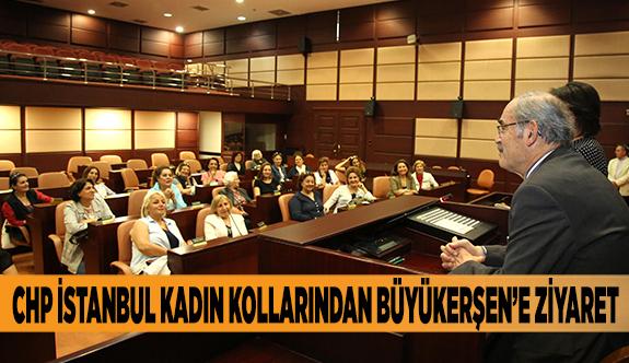 CHP İSTANBUL KADIN KOLLARINDAN BÜYÜKERŞEN'E ZİYARET