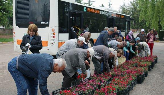 Büyükşehir babalar gününde mezarlıkta çiçek dağıttı
