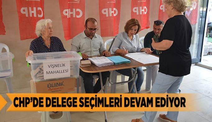 CHP'DE DELEGE SEÇİMLERİ DEVAM EDİYOR
