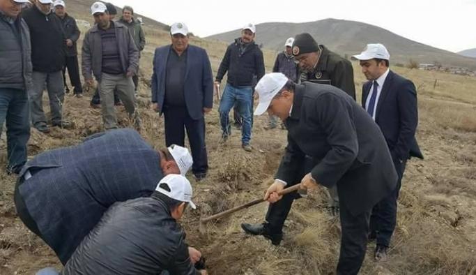 İkipınar'da 68 bin fidan toprakla buluştu