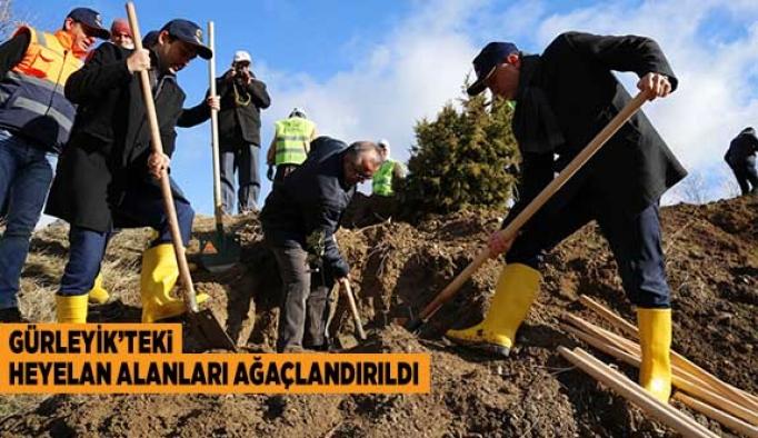 Gürleyik'teki Heyelan Bölgesine 3200 Fidan dikildi