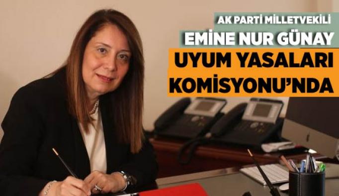 PROF. DR. GÜNAY UYUM YASALARI KOMİSYONUNDA