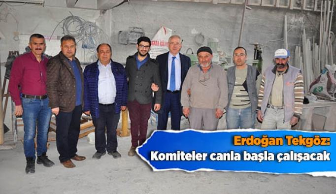 Erdoğan Tekgöz: Komiteler canla başla çalışacak