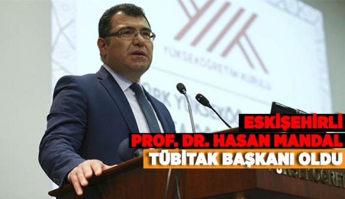 ESKİŞEHİRLİ PROF. DR. HASAN MANDAL'A YENİ BİR GÖREV DAHA