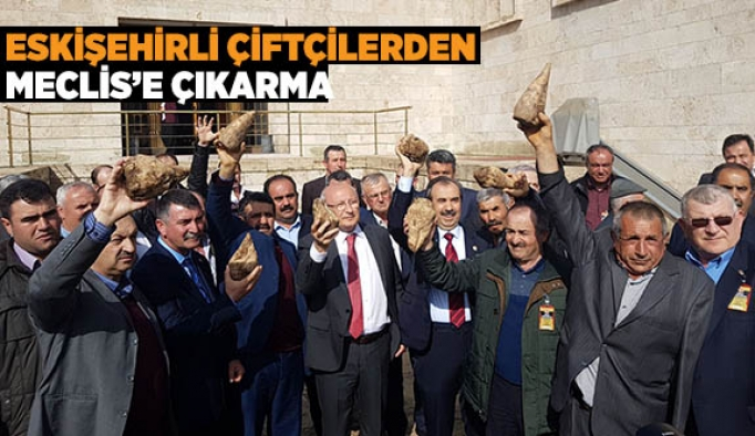 Eskişehirli çiftçilerden Meclis'e çıkarma