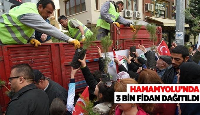 HAMAMYOLU'NDA 3 BİN FİDAN DAĞITILDI
