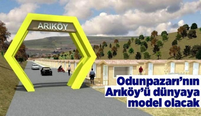 Odunpazarı'nın Arıköy'ü dünyaya model olacak