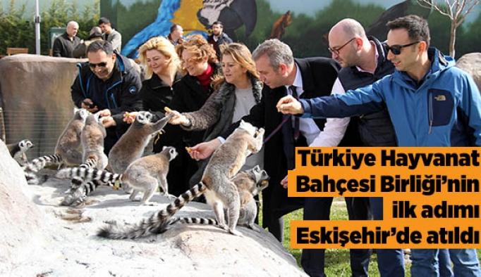 Türkiye Hayvanat Bahçesi Birliği'nin ilk adımı Eskişehir'de atıldı