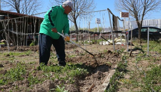 Hobi Bahçelerinde sağlıklı yaşamın tadını çıkarıyorlar