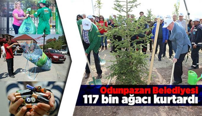 Odunpazarı Belediyesi 117 bin ağacı kurtardı