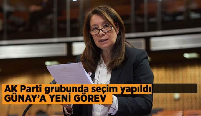 Emine Nur Günay'a yeni görev