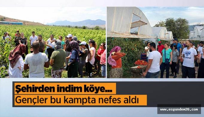 Şehir hayatından sıkılan gençler  Büyükşehir'in üretim kampıyla nefes aldı