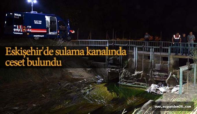 Eskişehir'de sulama kanalında ceset bulundu