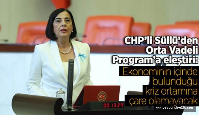 Süllü'den Orta Vadeli Program'a eleştiri