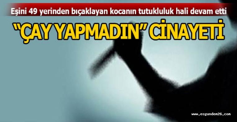 Eskişehir'deki cinayet davası başladı