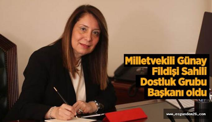 AK Partili Günay'a yeni görev