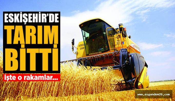 Eskişehir'de tarım bitti!
