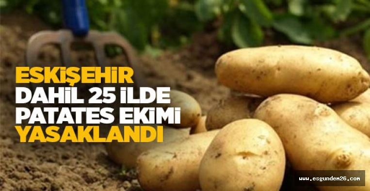 25 İLDE PATATES EKİMİ YASAKLANDI