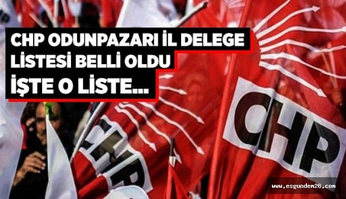 CHP ODUNPAZARI İL DELEGE LİSTESİ BELLİ OLDU