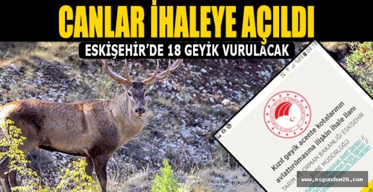 Eskişehir'de geyikleri vuracaklar