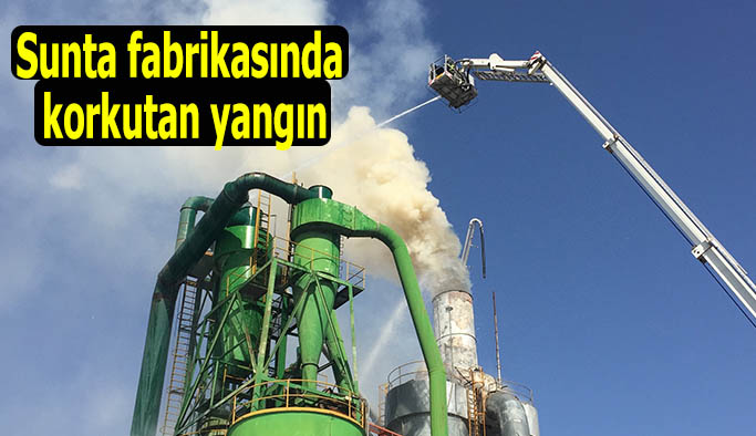 Eskişehir'deki yangın korkuttu