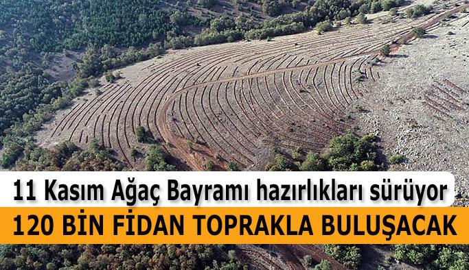 Eskişehir Orman Bölge Müdürü Recep Temel: Fidan dikimi için Eskişehir'de 22 ayrı lokasyon hazırlandı.