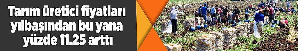 Tarım üretici fiyatları yılbaşından bu yana yüzde 11.25 arttı