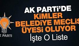 İŞTE AK PARTİ'NİN MECLİS ÜYESİ ADAY LİSTESİ