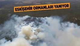 ESKİŞEHİR'DE ORMAN YANGINI