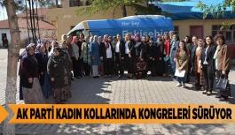 AK PARTİ KADIN KOLLARINDA KONGRELERİ SÜRÜYOR
