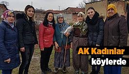 AK Kadınlar Köylerde