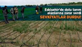 Eskişehir'de dolu tarım alanlarına zarar verdi
