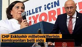 CHP Eskişehir milletvekillerinin komisyonları belli oldu