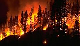 Orman yangını haritası açıklandı
