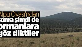 Eskişehir'de 31 bin hektarlık alanda yüzbinlerce ağaç katledilecek