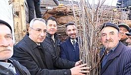 Sivrihisar'da ceviz fidanları dağıtıldı
