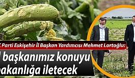 AK Parti'den çiftçilere geçmiş olsun ziyareti
