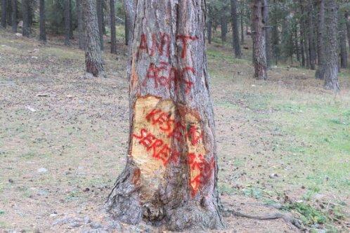 Ormana zarar verenlere tepki