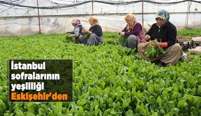İstanbul sofralarının yeşilliği Eskişehir'den