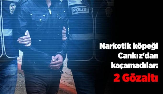 Narkotik köpeği Cankız'dan kaçamadılar: 2 Gözaltı