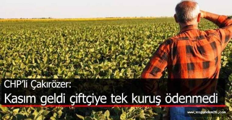 CHP'li Çakırözer, 2020 bütçesi görüşmelerinde çiftçilere afet yardımlarını sordu