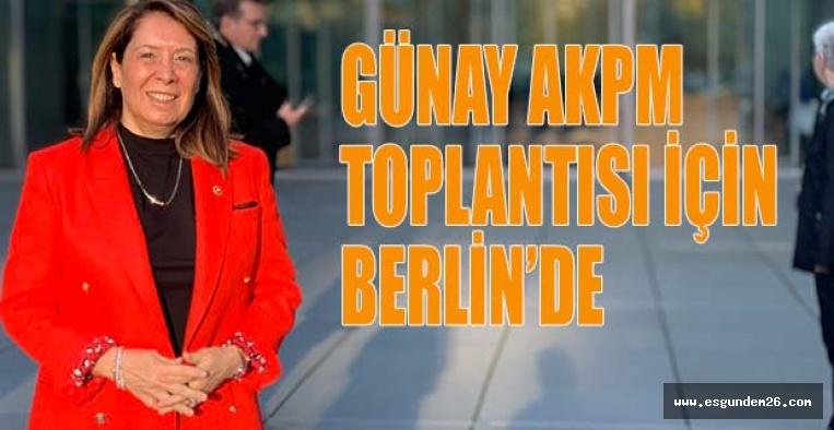 GÜNAY AKPM TOPLANTISI İÇİN BERLİN'DE
