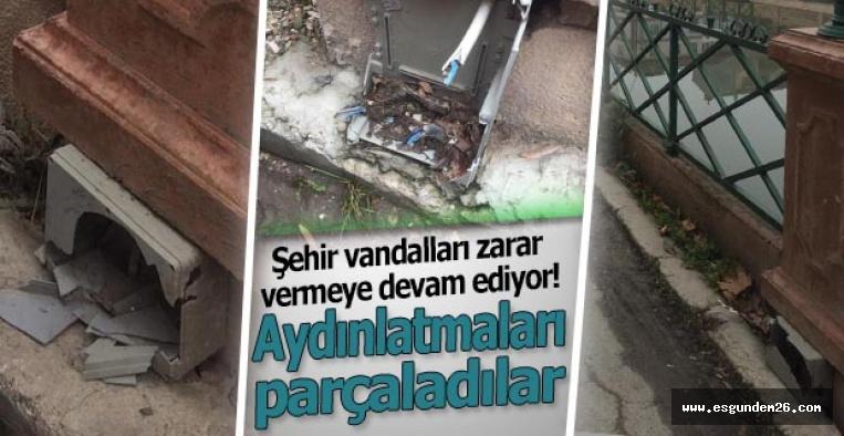 Şehir vandalları zarar vermeye devam ediyor
