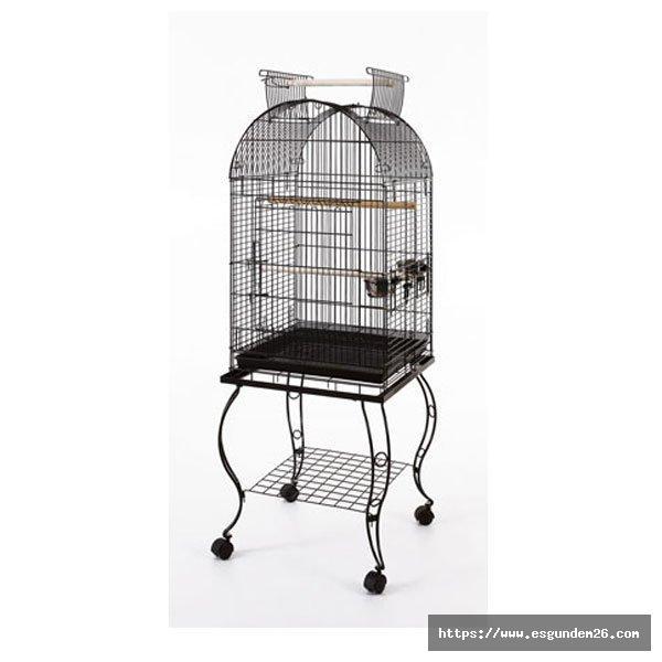 En İyi Papağan Kafesi Fiyatları ve Modelleri Pettema.com'da!