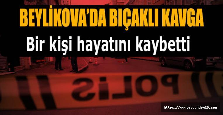 Eskişehir Beylikova'da cinayet