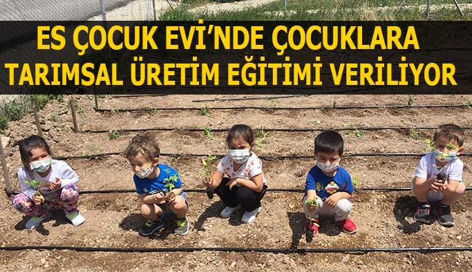 Es Çocuk Evi'nde çocuklara  tarımsal üretim eğitimi veriliyor