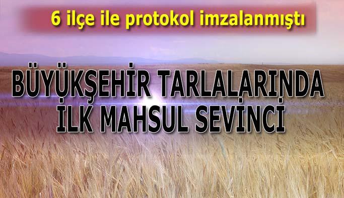 Eskişehir Büyükşehir tarlalarında ilk mahsuller yetişti